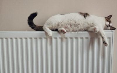 L'énergie de votre logement: comment choisir son type de chauffage?